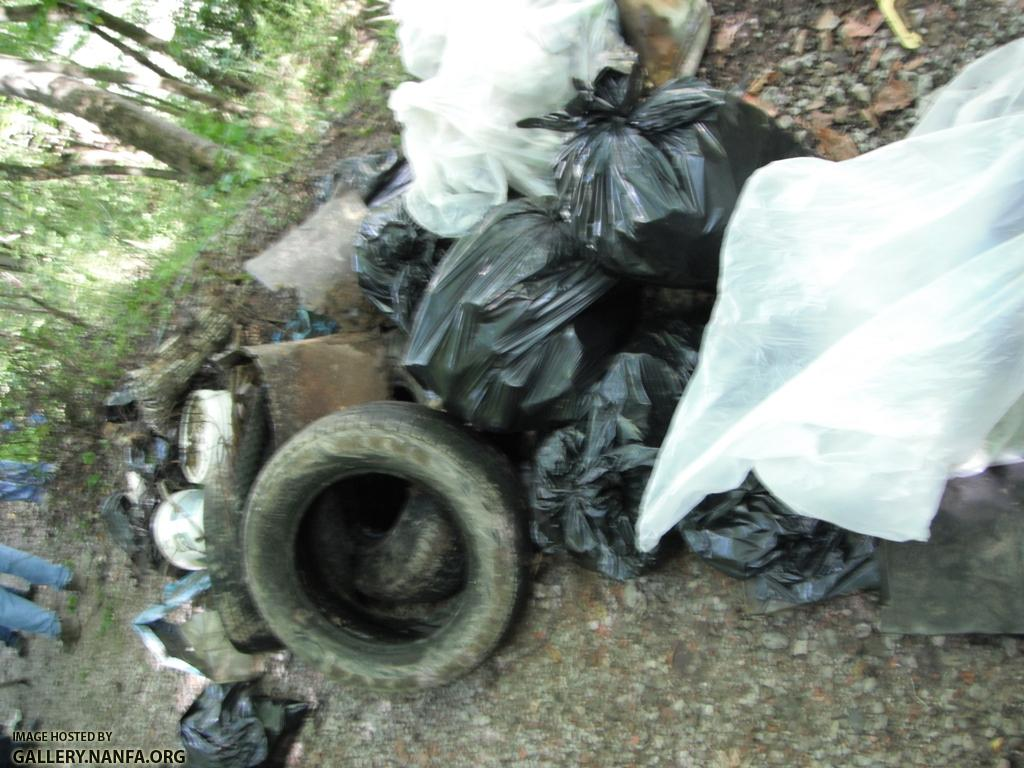 Clean the Cumberland - Trash Picked 2.JPG