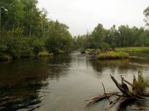 North Branch Au Sable River