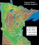 Pugnose Shiner - Notropis anogenus distribution in Minnesota