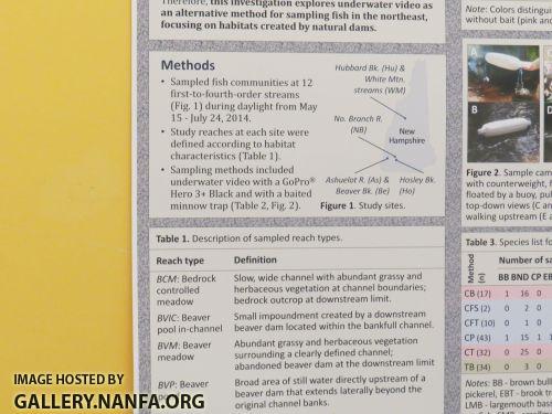 Aug+3+study+3+rsz.jpg