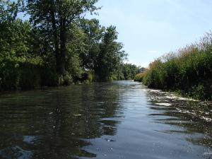 Hodge Ditch